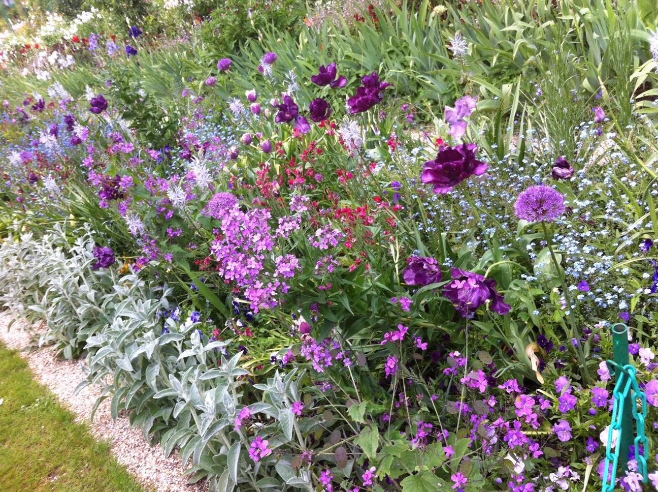 Vue d'une allée du Clos Normand, floraison d'avril - Jardins de Claude Monet, Giverny